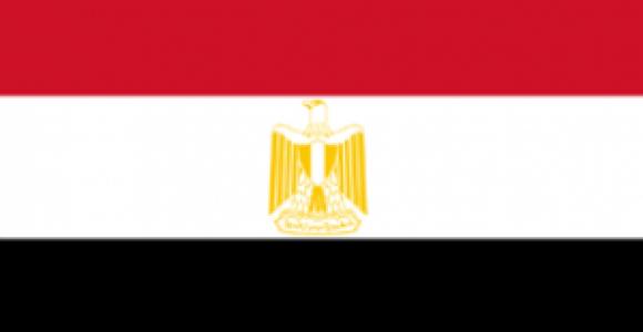ائتلاف المنظمات النسوية: القومي للمرأة لا يمثل المصريات ونطالب بإسقاطه